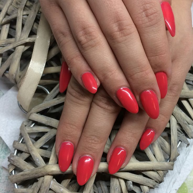 Red coral Nails red manicure Shellac nails