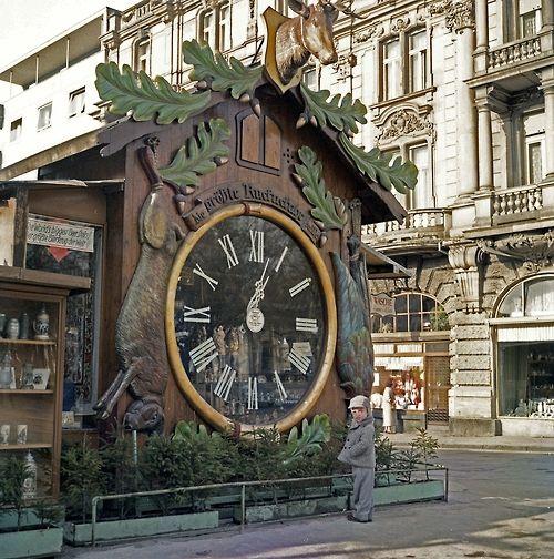 michael3900:  Cuckoo clock in Wiesbaden, Germany (1958).