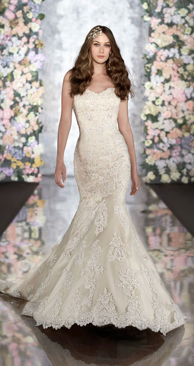 23 best wedding dresses couture women images on pinterest martina liana wedding dress pre owned stunning bride designer wedding gown ombrellifo Image collections