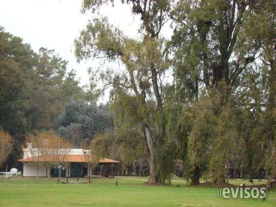 Lote En Exaltación De La Cruz  ESTANCIA LA MACARENA está realizando una promoción de ..  http://capilla-del-senor.evisos.com.ar/lote-en-exaltacion-de-la-cruz-id-971395