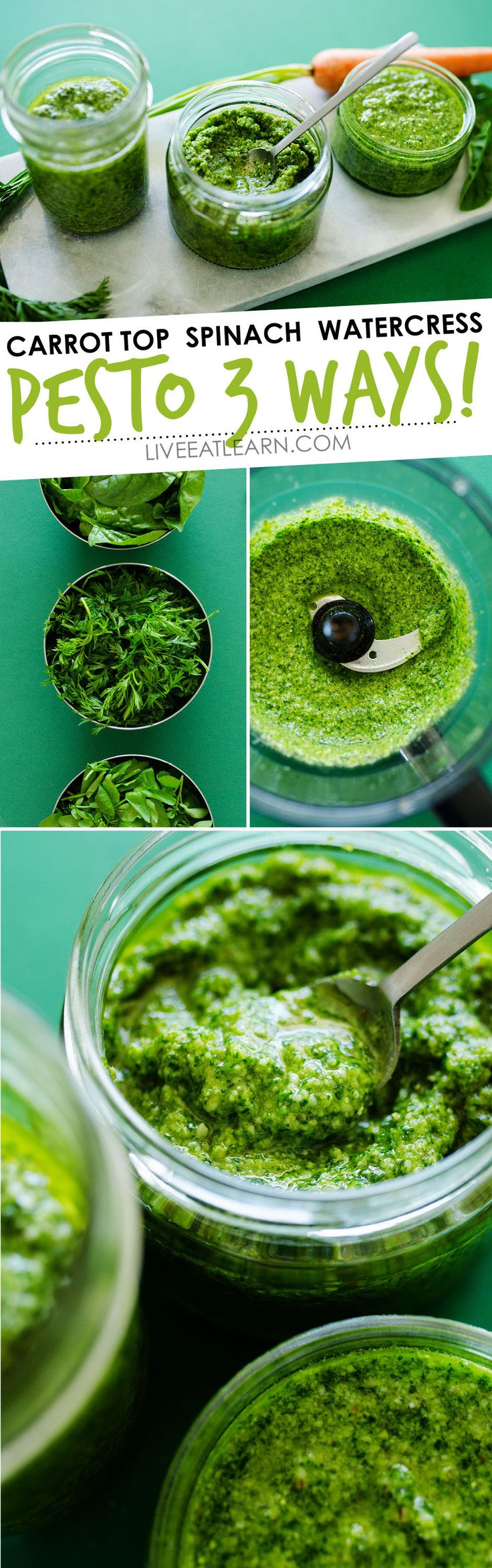 Got extra greens? Make some Leafy Greens Pesto with this easy pesto recipe! Here are 3 recipes for carrot top pesto, spinach pesto, and watercress pesto (all in under 5 minutes!) This is a flavor-packed sauce that is perfect for pesto pasta, pesto sandwiches, or even as a dip. // Live Eat Learn