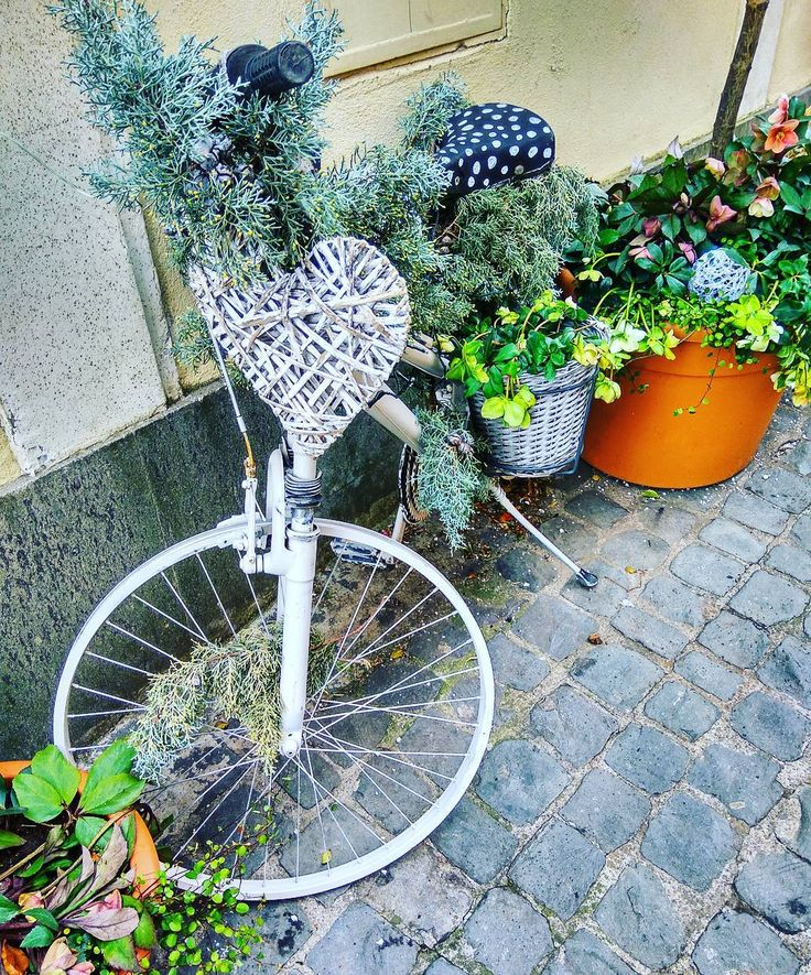 It is a small and very nice town Albano Laziale! The main street full of  beautiful decorated bicycles! #dontneedfilters    #старыйгород #улочка #уличныйарт #велосипед #красиво #древность #декор  #beauty #discover #lifeofadventure #oldtown #traveling #travelgram #traveltheworld #discovertheplanet #entrance #art #old #acient #magicworld #juststreet #bicycle #nymood #wonderland #albanoLaziale #nofilter #streetart #showcase #shop