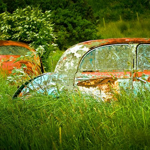 Vintage Car Grass Textures by ►CubaGallery, via Flickr