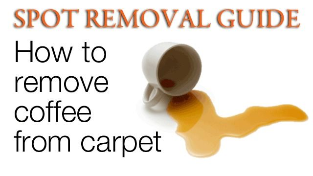 How to get coffee stains out of carpet: 2 cups lukewarm water, 1/4 cup lemon juice, a little dish soap.  WORKS GREAT