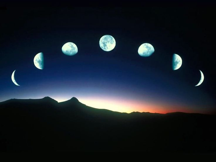 moon phases {Hey, Dad!  Remember that 5th grade science project you helped me with?----hahaha!}