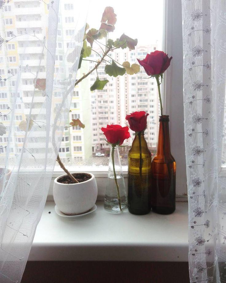 В Монтессори садике куда ходила Леона с полутора лет меня сразу покорило такое занятие детей как оранжеровка цветов. Едва научившиеся ходить малыши сосредоточенно наливают воду в крохотную вазочку вставляют в нее маленький цветок от кустовой хризантемы берут кружевную мини-салфеточку ставят вазочку с цветком на эту салфетку на стол где будут есть или еще куда-нибудь. Что-то дома у меня никак не доходили руки и мозг до организации среды для этого милого занятия. А тут огромный букет роз…