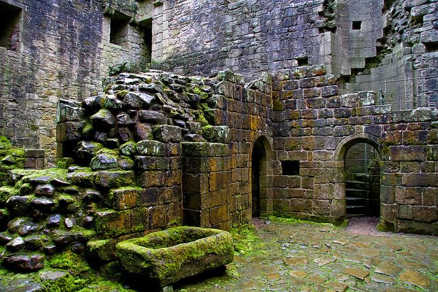 Hermitage Castle Interior by Dave Cleghorn, via Flickr--adding it for the moss covered stone mostly...