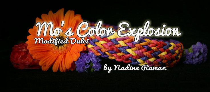 Mo's Color Explosion | Swiss Paracord