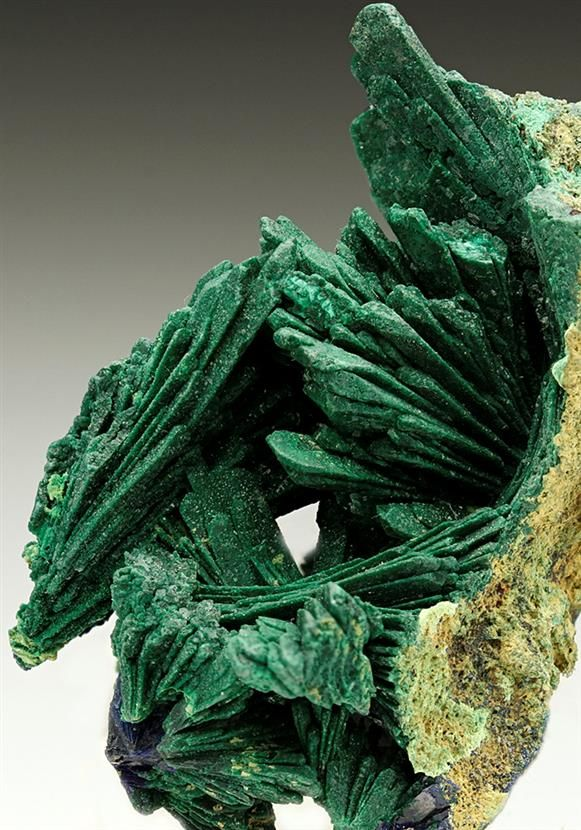 Classic pseudomorph of Malachite after Azurite from the famous Tsumeb Mine, Namibia. Well-developed bladed crystals of Azurite mostly form as parallel groups.  Crystal Classics Minerals