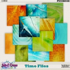 Time Flies Papers