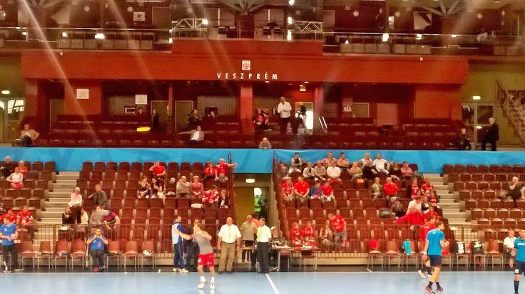 The last warm-up of the season in Veszprém Aréna