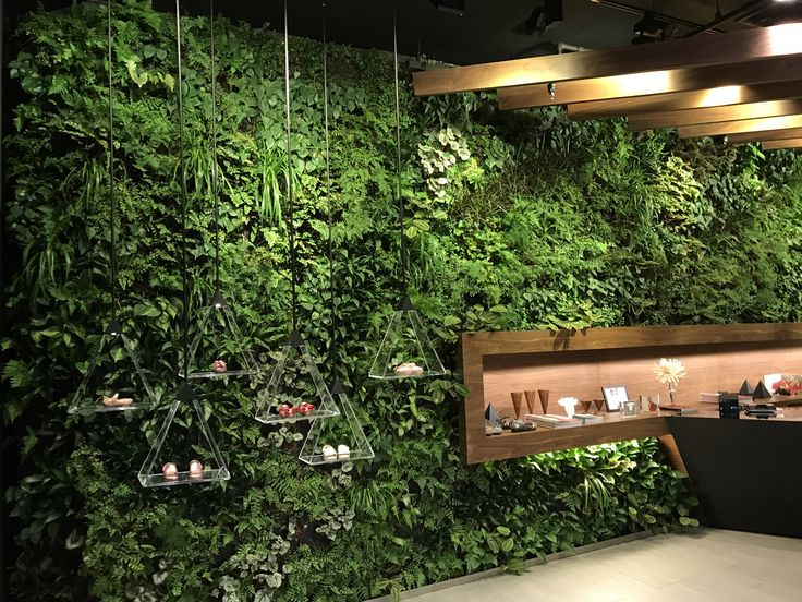 plantwalldesign's latest custom vertical garden brings the aura of the Amazon rainforest indoors. Located at Melissa at 500 Broadway in SoHo. Special thanks to the designer Muti Randolph for making the project possible.