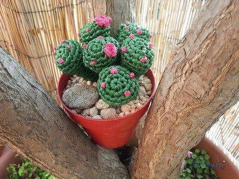 Tutorial crochet/ganchillo cactus dedo parte 1 - YouTube