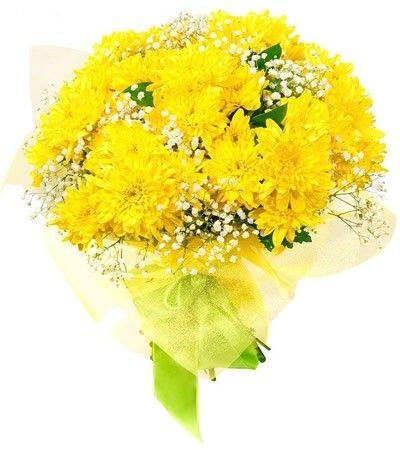 Букет состоит из 7 хризантем, 3 гиспофил и 6 рускусов  http://www.dostavka-tsvetov.com/shop/29/desc/veter-peremen