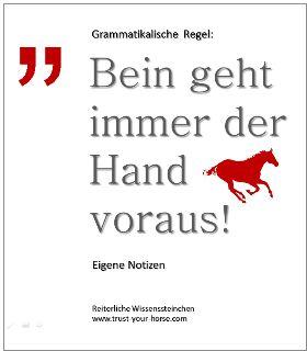 Trust-your-Horse WISSENSSTEINCHEN: Das Bein muss stets der Hand voraus gehen! Das Bein erzeugt die Energie, die dann die Hand ausformt (R.Vizethum)