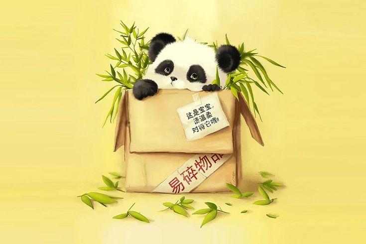 Cute Cartoon Panda   Osito Panda, Caja, Caricatura, Cartoon wallpaper download