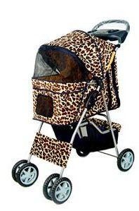 fashionable baby!