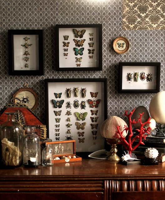 The Cabinet of Curiosities - 4 new shadow box specimen collections ^_^ by Mab Graves ( love the display of everything, corals, minerals, glass globes, her art .... You gotta know I really love Mab Grave's world ♥♥♥ )