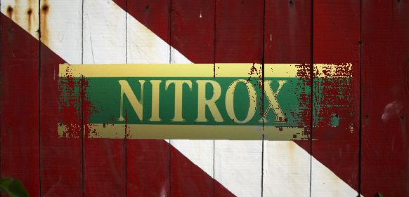 Nitrox Diving 101: What is Enriched Air Diving http://www.dive.in/guide/nitrox-diving-101-enriched-air-diving/