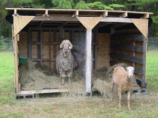 A Smaller Version Pallet House Goats Pinterest