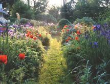 Inspírate con estos jardines: Camino de flores silvestres