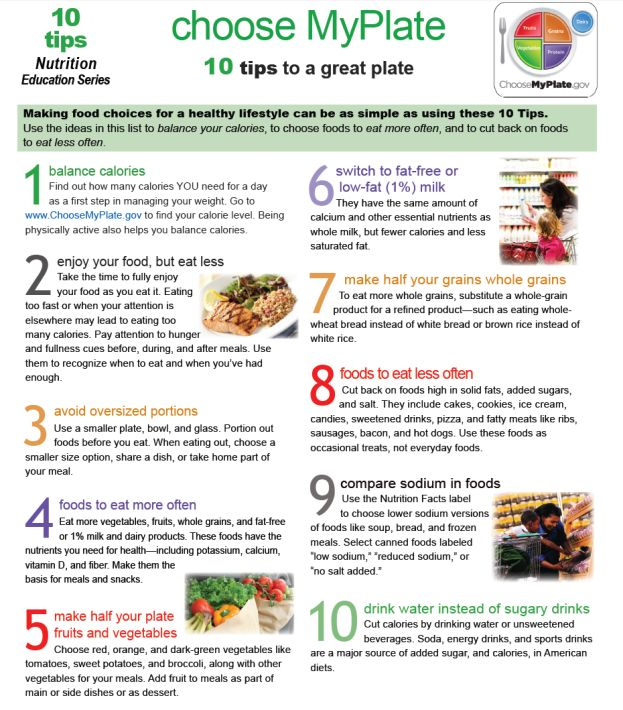 My Plate Guidelines