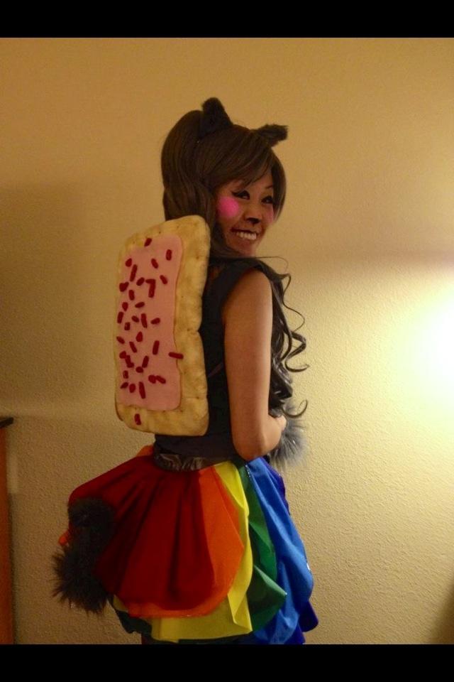 Nyan Cat costume, DIY.