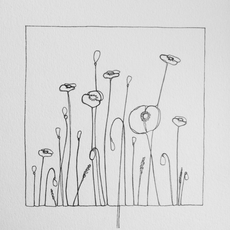 Continuous line doodle: Poppies. www.theconstantdo...