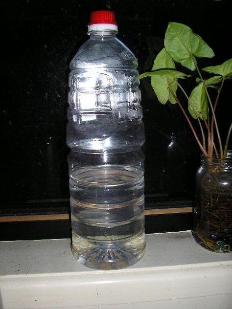 自作の水素水。 | ゴールドコースト de 食事療法・・・生きる  水1リットルに対して 小さじ1杯分の玄米(又は白米)を入れて48時間放置 玄米(白米)は良く洗って入れます。 たったそれだけ。  48時間後には水素水が出来上がっています。その後は24時間(夏場は12時間)毎に水を入れ替えて 発芽するまで(4~6日位)使えます。