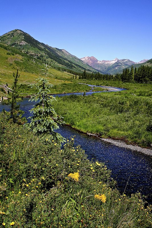 90 best images about where i live gunnison colorado on for Crested butte fishing