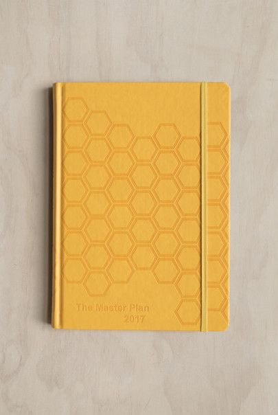 Milestone Press - The Master Plan 2017 Family Diary - Weekly - Large (15x21cm) - Hard Cover