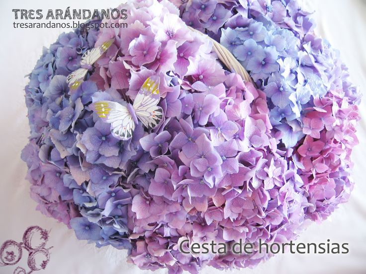Hydrangea flower arrangements for wedding