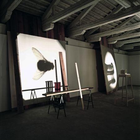 Francisco Tropa | Galerie Jocelyn Wolff
