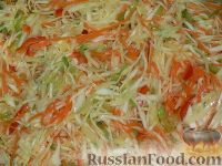 """Фото к рецепту: Салат из капусты """"Витаминный"""""""
