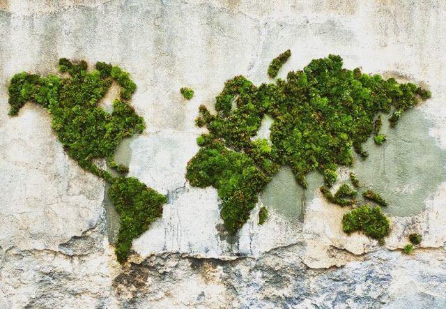 истории Истории : Экологически чистый стрит-арт: граффити, нарисован...