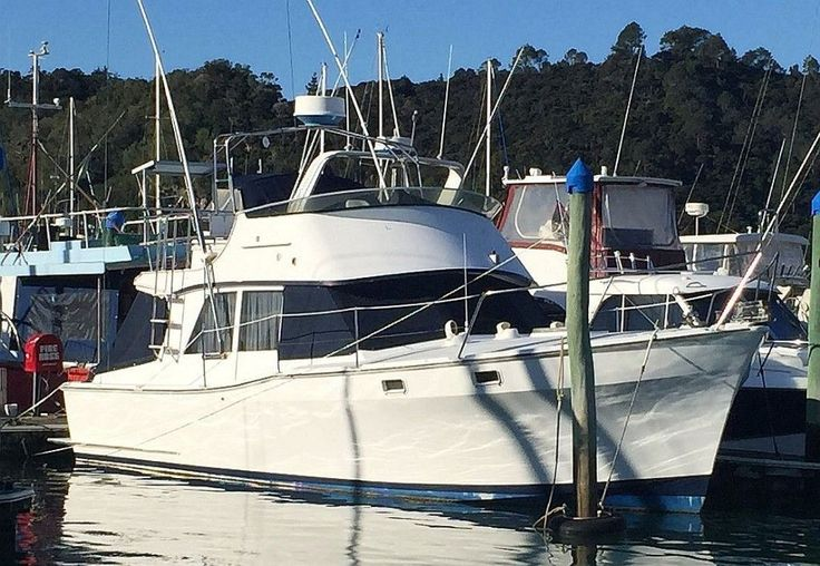 Sterling 33, Find a Boat, Used Boat for sale in New Zealand. Find your next Sterling 33 on marinehub.co.nz