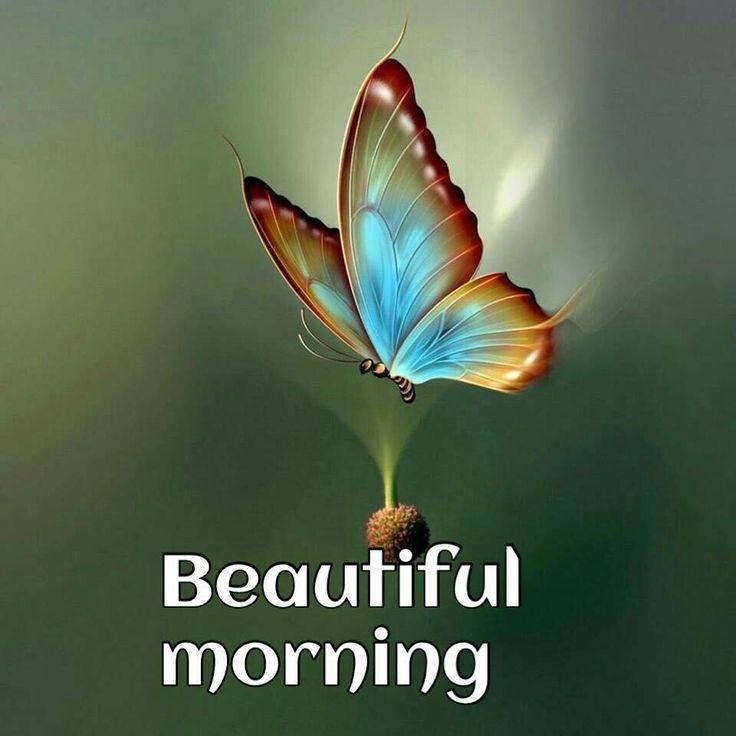 402ce62d4fcf979180b3d6081a0bdf19--beautiful-morning-beautiful-dream.jpg