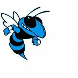 Our mascot- the Savannah High School Blue Jackets!! | Childhood ...