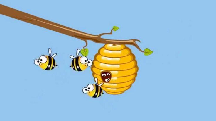 Zoem Zoem Zegt De Honing Bij - Kinderliedjes