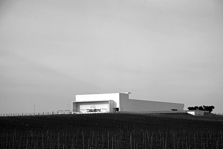 Alvaro Siza - Adega Mayor winery