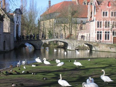 Amazing Belgium: The legend of the Bruges swans