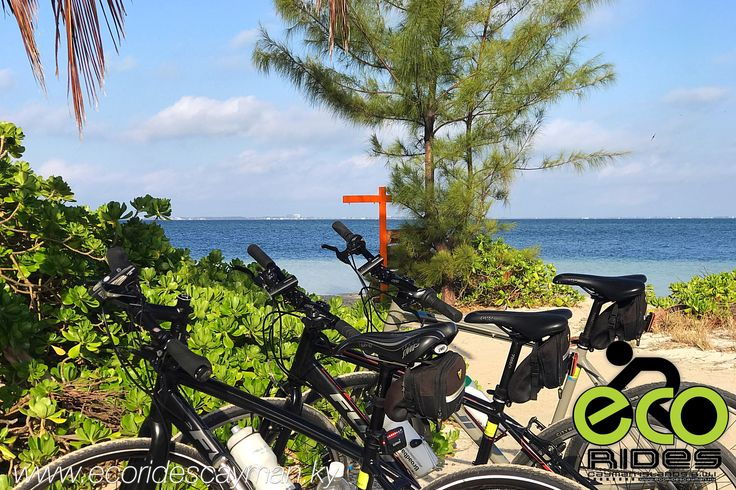 good morning  it u0026 39 s a beautiful day  come explore with eco rides cayman