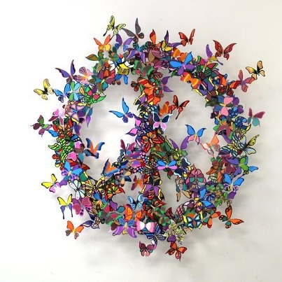 the transformation of the butterfly and peace <3