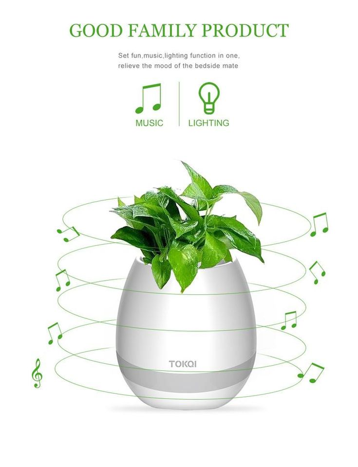 New TOKQI Bluetoth Smart Touch Music Flowerpots Plant Piano Music Playing Wireless Flowerpot Flower Pots No Plants Smart Music Pot Bluetooth Subwoofer Speaker Flower Pot Bluetooth Speaker Online with $31.2/Piece on Bestfor4you's Store | DHgate.com