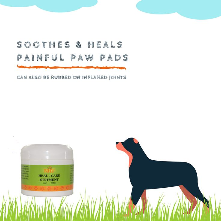HEAL CARE OINTMENT FOR DOGS ointment for paw pad injuries in dogs  Promotes healing of injured paws Helps sterilize wounds Supports the healing of cracks and bruises Protects and soothes painful paw pads
