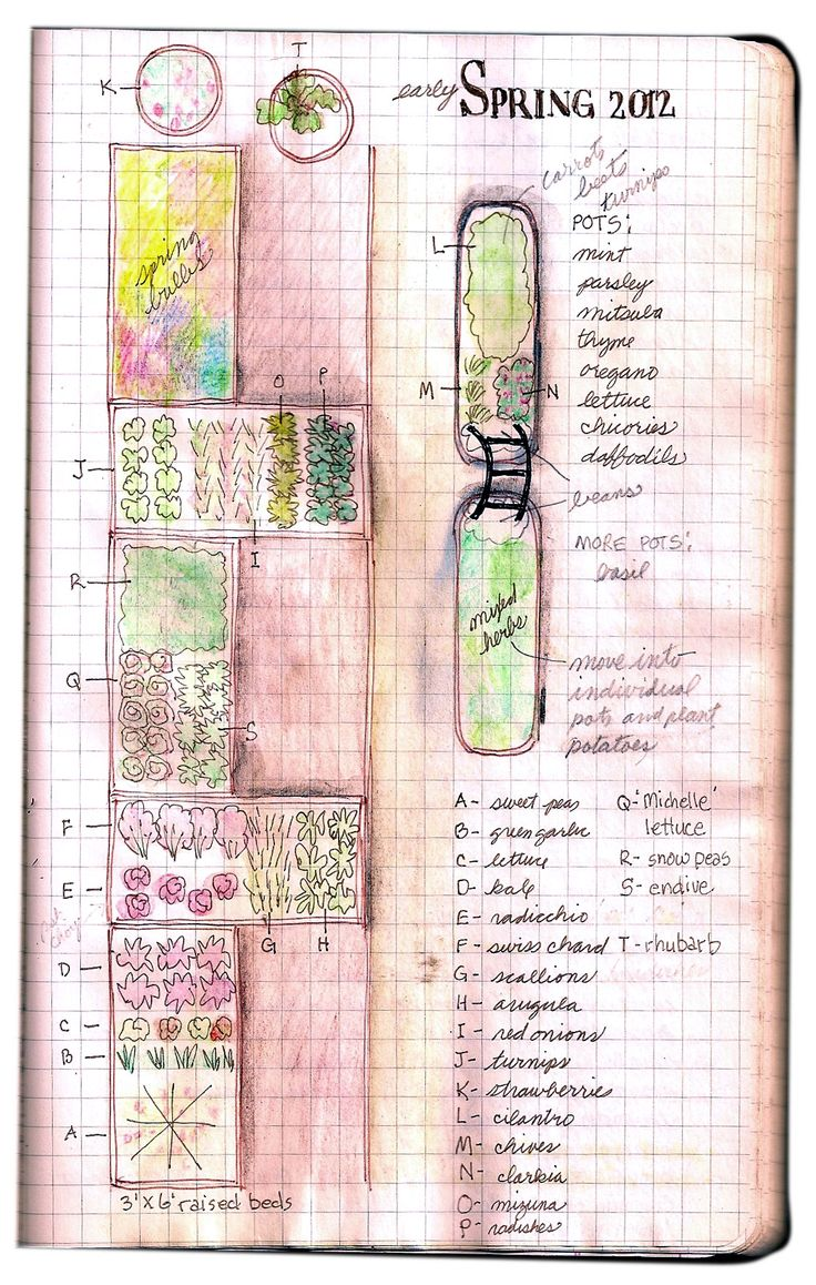 Nothing looks more amazing than hand drawn pictures in a journal. Check out how her garden grows!