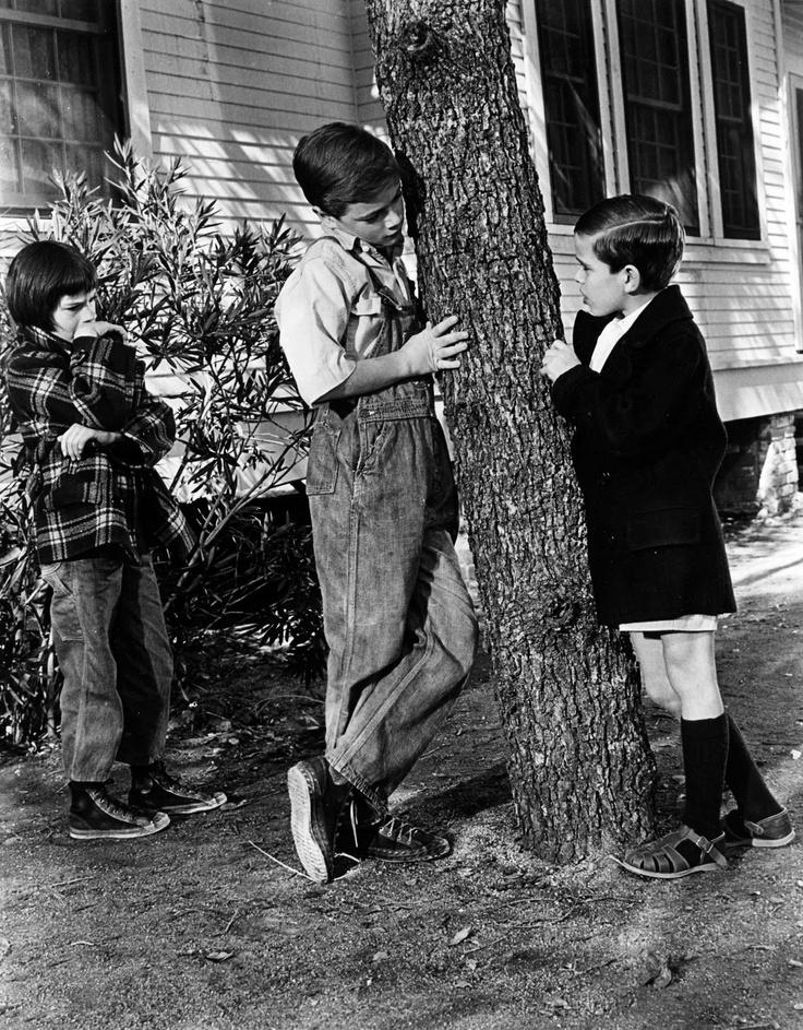 Protagonistas de Matar a un Ruiseñor, hijos de Atticus, el abogado