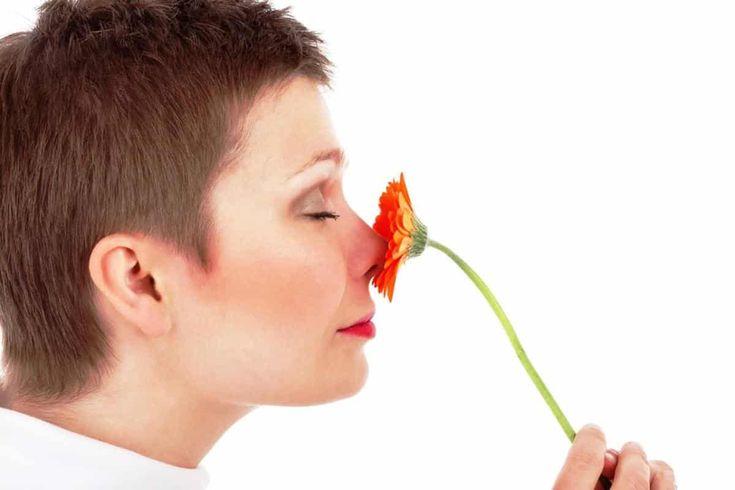 ¿Podemos hablar de envejecimiento de los sentidos? #Audición, #Gusto, #Olfato, #Tacto, #Visión #Hábitossaludables
