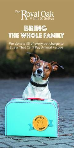 Need an extra reason not leave your pet behind? We are now donating $5 of every pet charge to Strays That Can't Pay! Please help us in supporting this great cause!