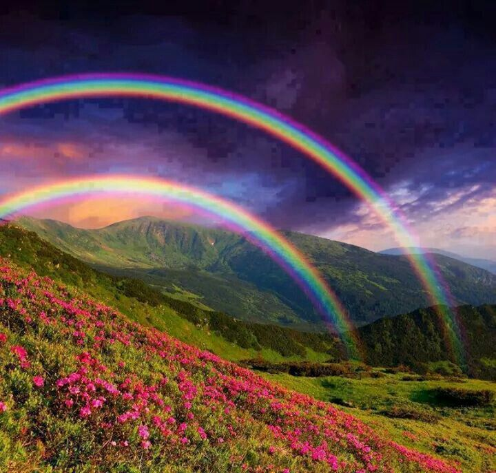 Beautiful Scenery With Double Rainbows